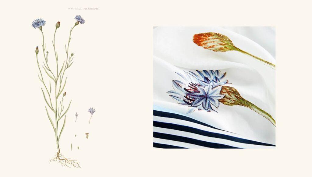 Frisk Flora D | 1+1 Textil XR-56